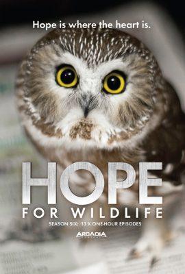hope s6